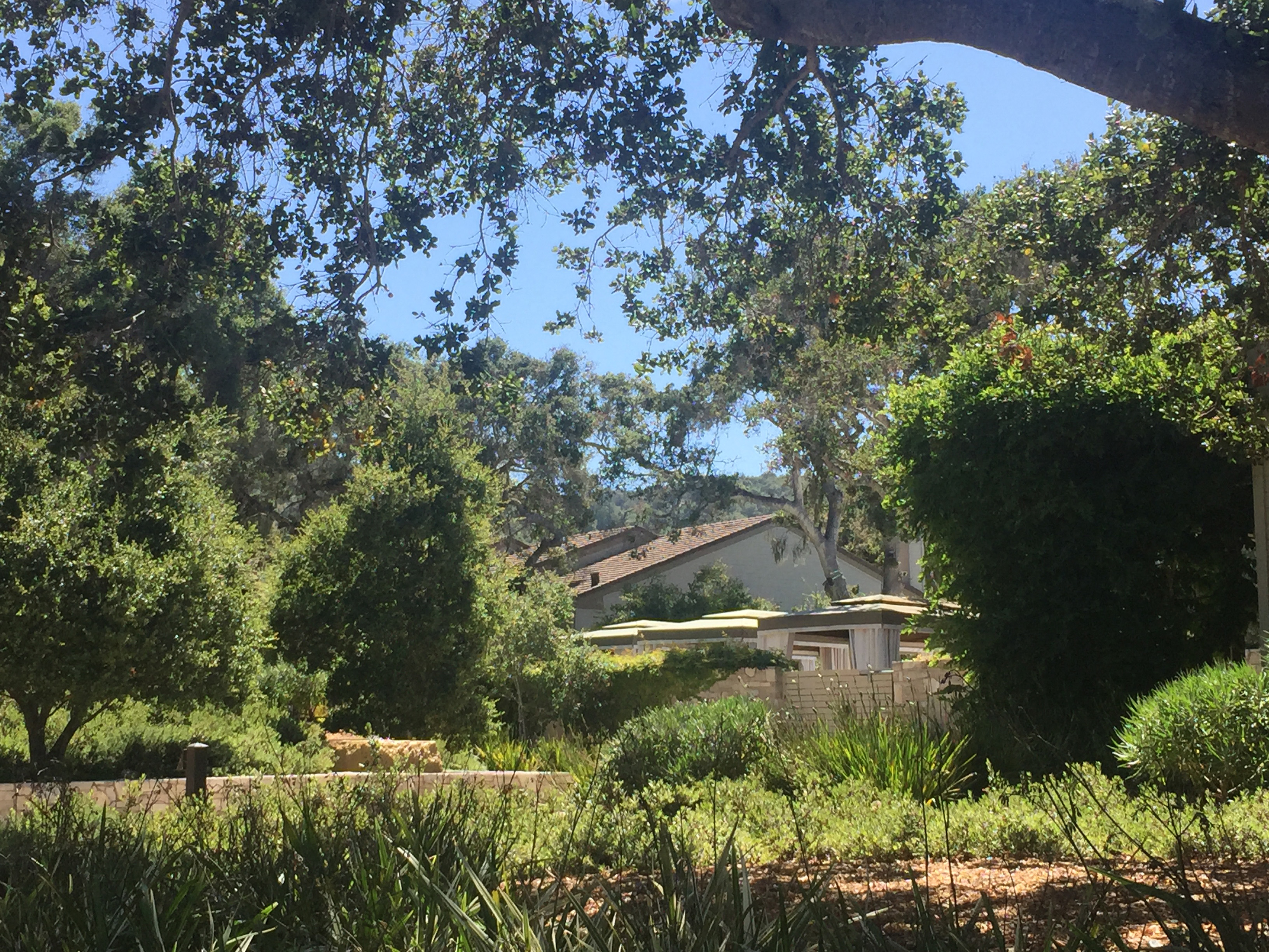 Carmel Valley Ranch Setting
