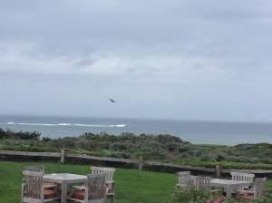 Inn at Spanish Bay Ocean View
